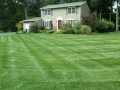 lawn care service pearl river