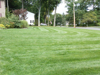second nature lawn care | pearl river ny lawn care