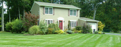 Organic Lawn Care service in Pearl River, NY