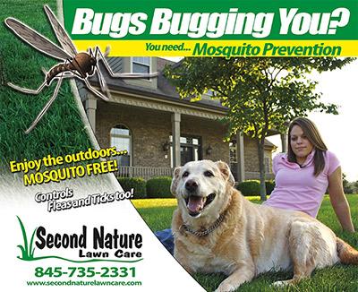 mosquito control pelham ny